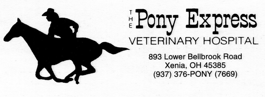 Pony Express Hiring Equine Assistant Position
